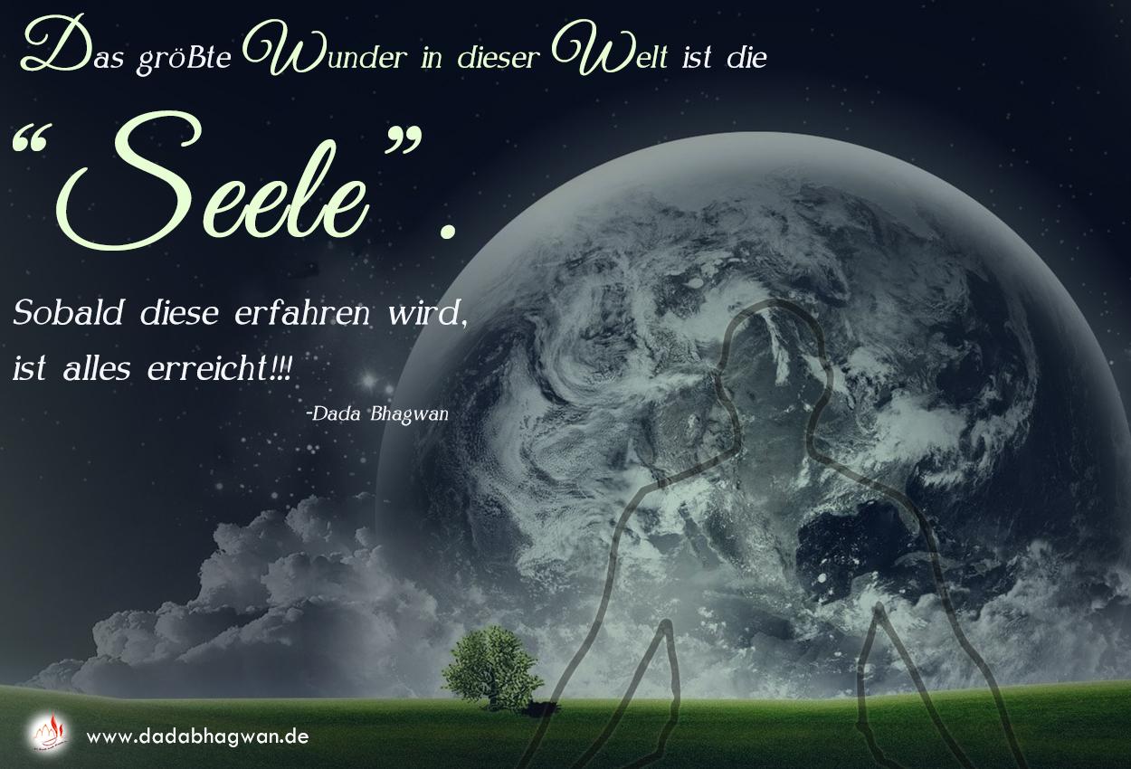Seele, das größte Wunder dieser Welt
